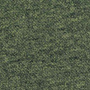 Essence - 7123