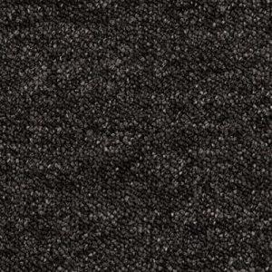 Essence - 9981