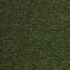 Tivoli - guyana moss